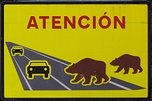 Bear road-sign © Teresa Farino