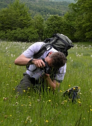 Flower photography in the Picos meadows © Teresa Farino